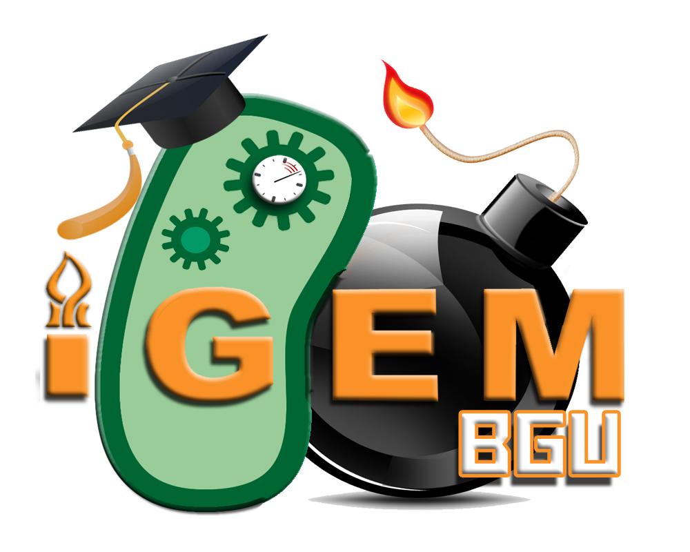 2013-BGU-Logo